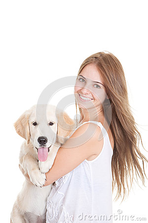 Pet golden retriever puppy dog