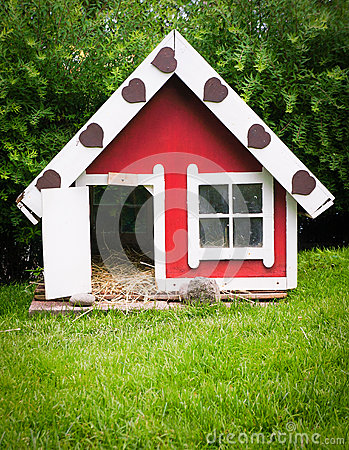 Pet house in garden