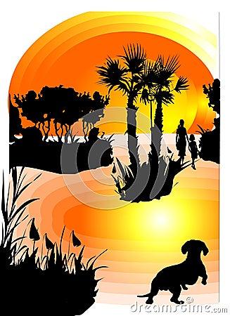 Pet Looking at Sunset