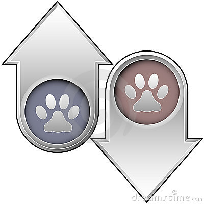 Pet paw print on up and down arrows