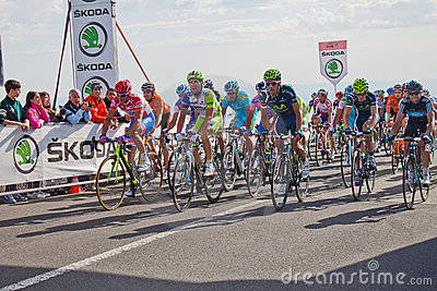 Petacchi and other cyclists Editorial Photo
