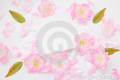 Petals and message card