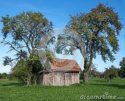 petite cabane en bois sous les arbres fruitiers photo stock image 44697178. Black Bedroom Furniture Sets. Home Design Ideas