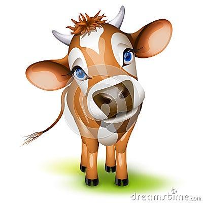 Petite vache du Jersey