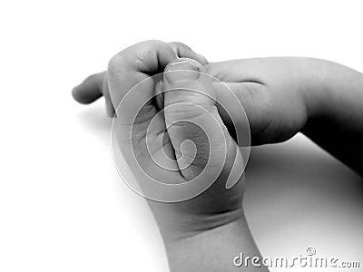 Petites mains
