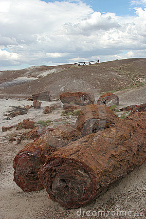 Free Petrified Logs At Painted Desert Stock Photography - 1788092