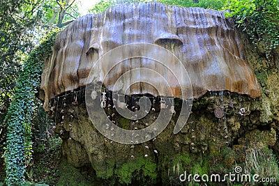 Petrifying wall in Knaresborough, Yorkshire, UK