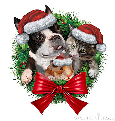 Pets Holiday Wreath Stock Images Image 36128394