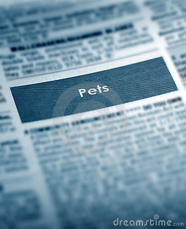 Pets For Sale Classifieds
