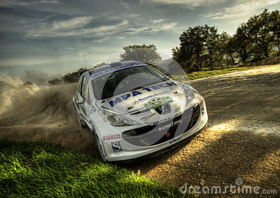 Peugeot 207 S2000 rally car Editorial Stock Photo