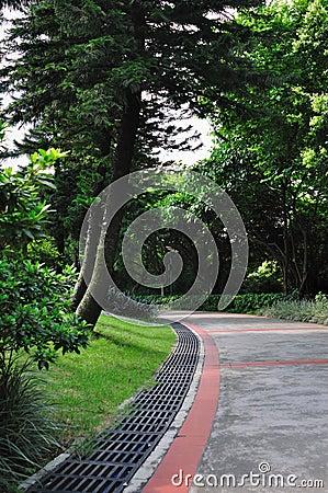 Pfad in Garten 4920