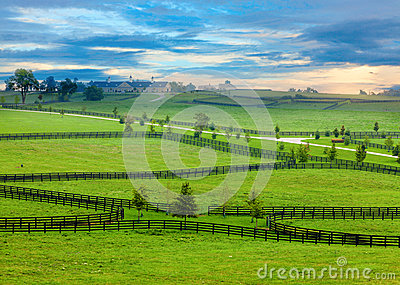 Pferdeland