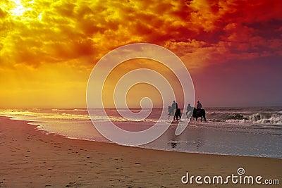 Pferdenreiten
