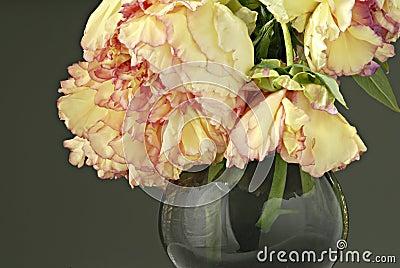 pfingstrosen im vase stockbilder bild 5740884. Black Bedroom Furniture Sets. Home Design Ideas