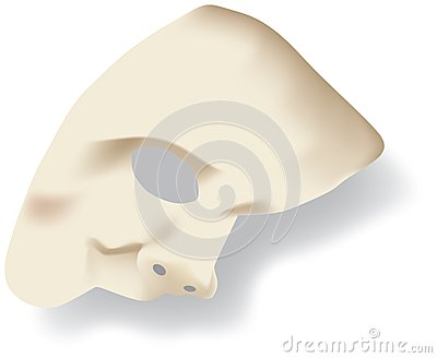 Phantom of the opera face mask