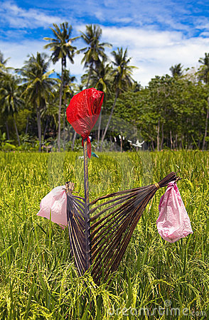 philippines-scarecrow-12740088 - Scarecrow - Philippine Photo Gallery