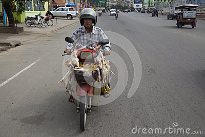 Phnom Penh, Cambodia Editorial Stock Image