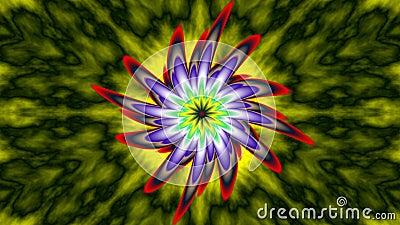 Phoenix bloom, widescreen