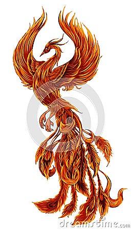 Free Phoenix Fire Bird Illustration And Character Design.Hand Drawn Phoenix Tattoo  Stock Photo - 99492720