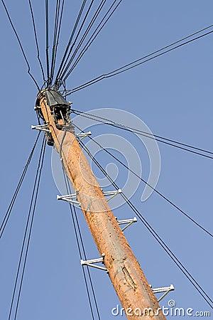 Free Phone Pole Royalty Free Stock Photography - 5499567