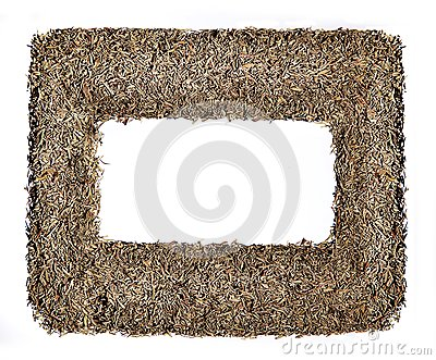 Photo frame construction of dry herb