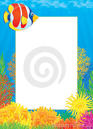 Photo frame with coral fish royalty free stock images for Fish photo frame