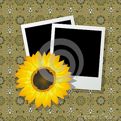 Photo frames with sunflower