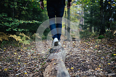 Photo Of Human Walking In The Woods During Daytime Free Public Domain Cc0 Image