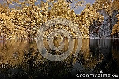 Photo infrarouge – lac, roche, et arbre dans le pair