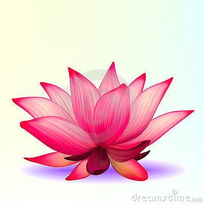 Photo-realistic lotus flower