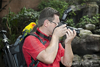 Photographer with bird on the shoulder