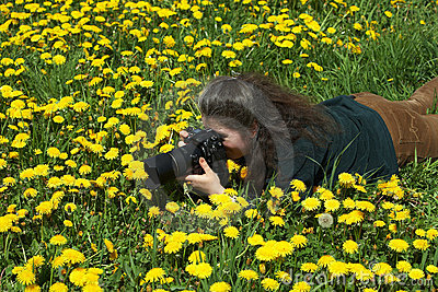 Photographer and dandelions