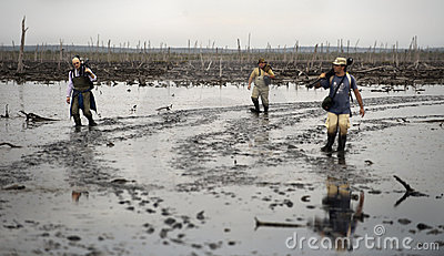 Photographers on a bog. Editorial Stock Photo