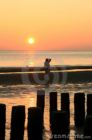 Free Photographing During Sunset Royalty Free Stock Photos - 4019878