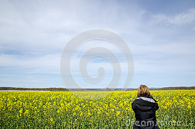 Photographing rape field