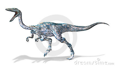 Photorealistic 3 D rendering of a Coelophysis.