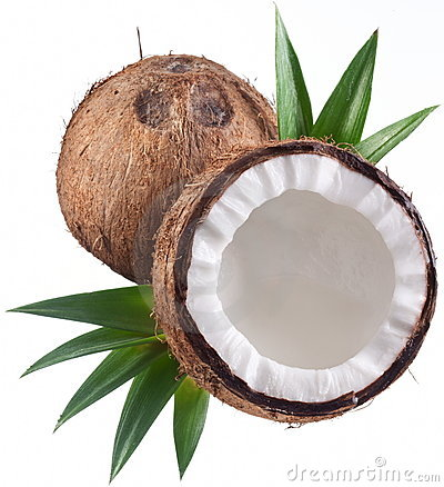 Photos of coconuts on a white background.