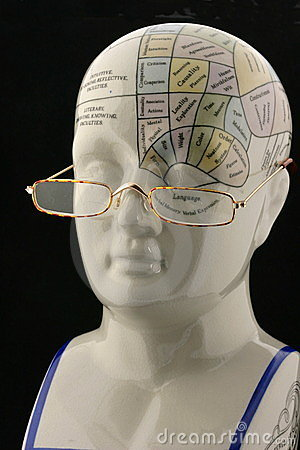 Phrenology head chart with reading glasses