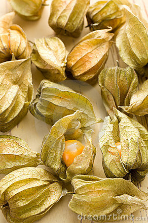 Free Physalis Fruit Royalty Free Stock Images - 17361569