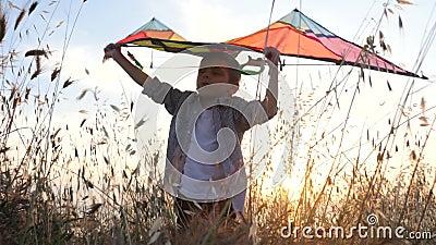 Piękna chłopiec reprezentuje że komarnicy na paragliding pozycja wśród trawy trzyma zabawkarską kanię nad jego głową pojęcie wyma zdjęcie wideo