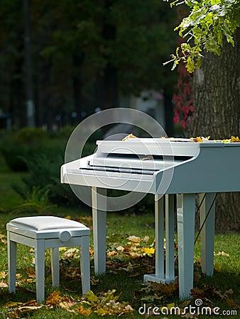 Piano in het park