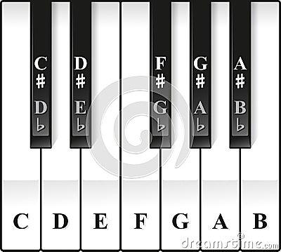 Piano Octave Keys Notes Named