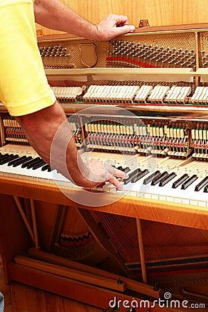 Free Piano Tuner Royalty Free Stock Photos - 4088448
