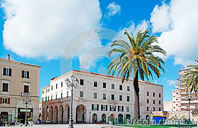 Piazza d italia palm