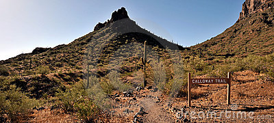 At the Picacho Peak