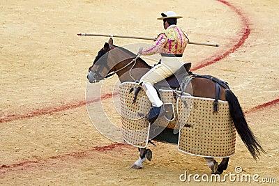 Picador in Seville Editorial Photography