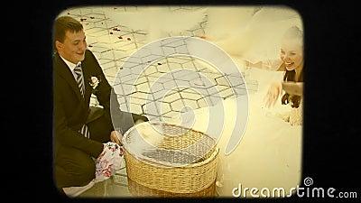Piccioni di And Bride Release dello sposo dei giovani retro stock footage