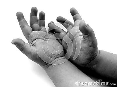 Piccole mani