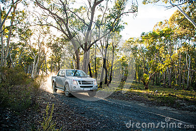 Pick-up truck forest road sunrise