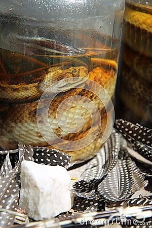 Pickled Snakes